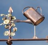 Watering Can Weathervane with Nasturtiums