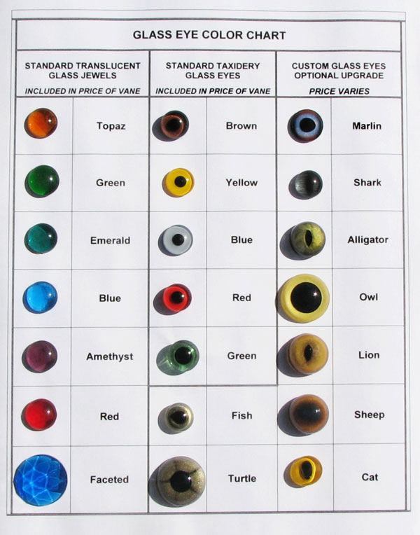 Eye-Color-Chart-P