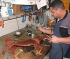 Victor-working-on-Dutch-Warm-Blood-Weathervane-P