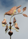 Robin-Weathervane-with-Chicks-042512-1-tn