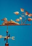 Loon-Weathervane-Fledging-Reeds-060499-TX1