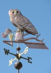 Spotted-Owl-Weathervane-with-Grapes-041410-TX1