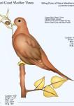 Dove-of-Peace-Weathervane-Sitting-072511-W