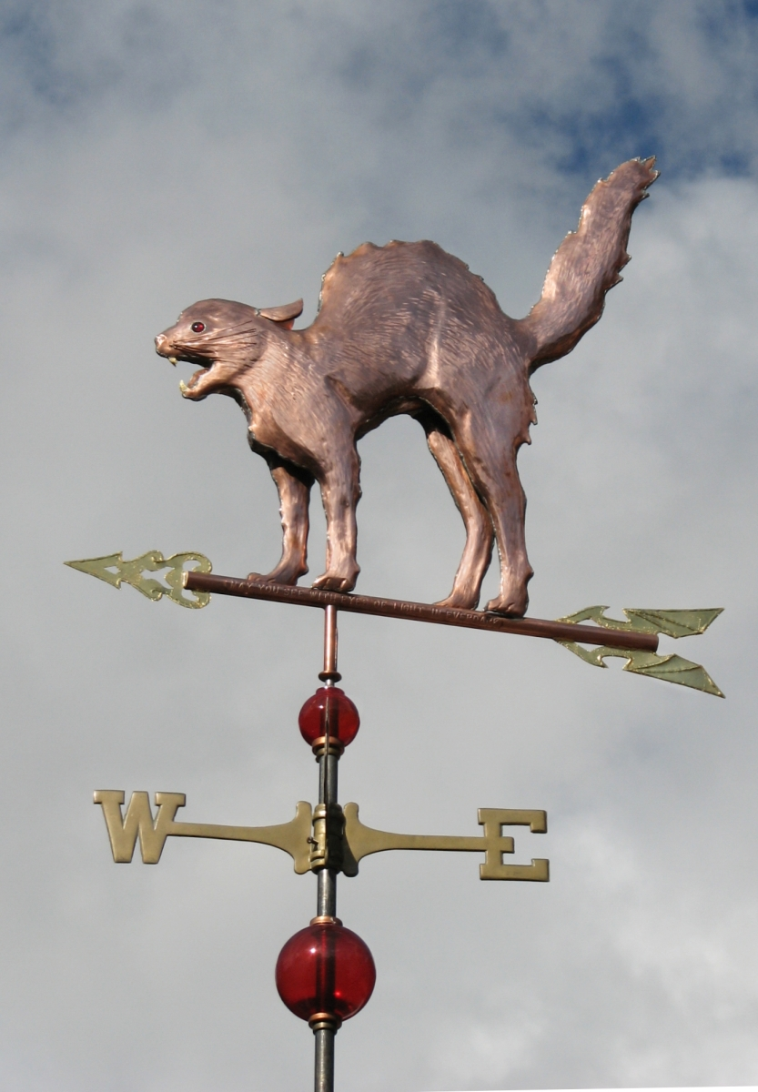 Scary Cat Weathervane Customization Available