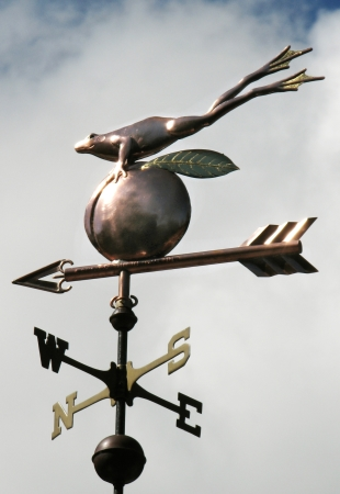 Frog Weathervane And Peach West Coast Weathervanes